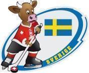 Pin Eishockey WM 2009 Team Schweden