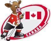 Pin Eishockey WM 2009 Team Canada