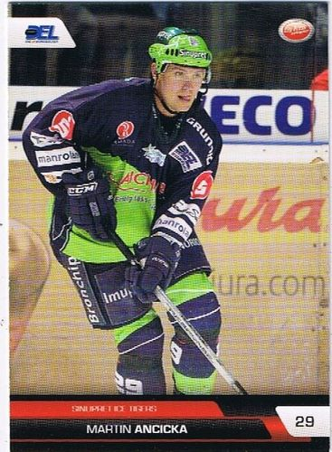 DEL Playerkarte 2008/2009 Martin Ancicka Ice Tigers